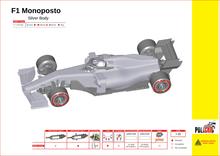 Moderne F1 zilver